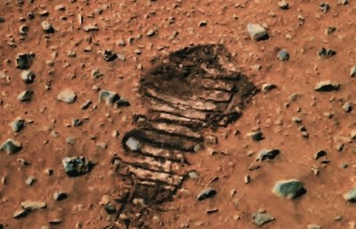 Martian tire tread